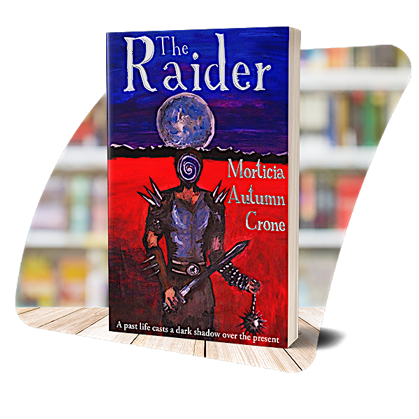 The cover of The Raider
