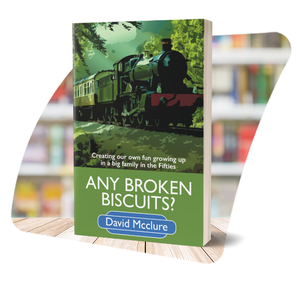 Any Broken Biscuits? cover